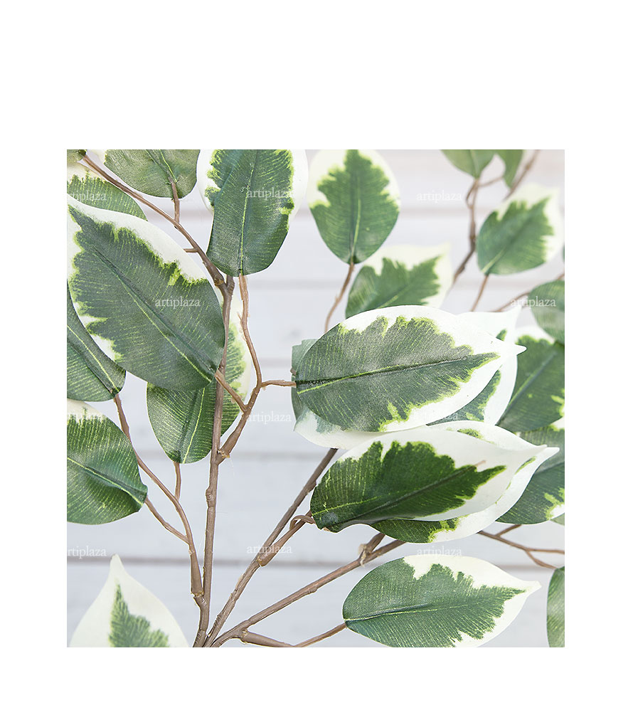 벤자민잎가지(그린/크림) 조화 - 아티플라자, 2,900원, 조화, 리스/가랜드