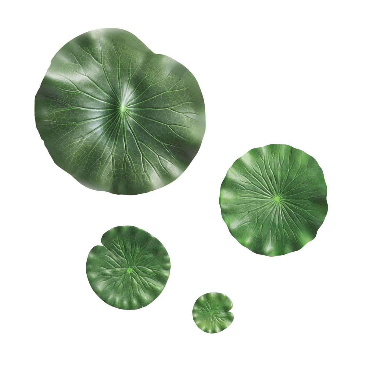 플로팅연잎