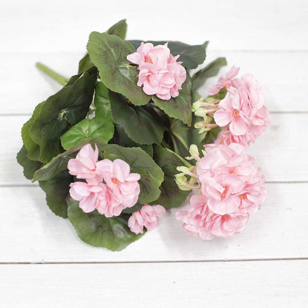 테이블 위에 핑크색 제라늄꽃 부쉬 사진