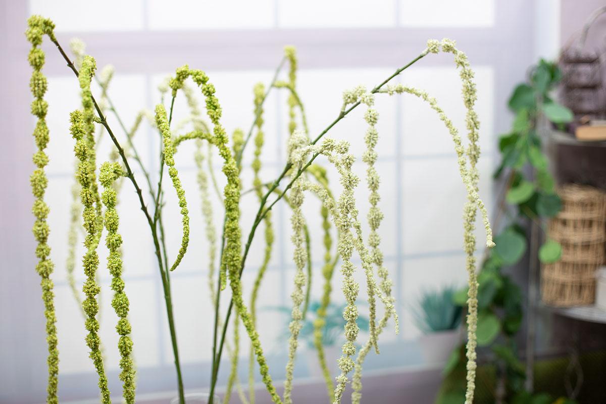 아마란투스 줄 맨드라미 가지 실크플라워 조화 꽃 장식 - 아티플라자, 17,000원, 조화, 부쉬
