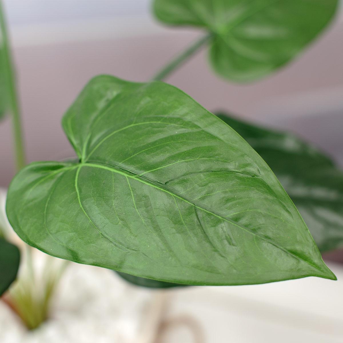 잎사귀 디테일 이미지