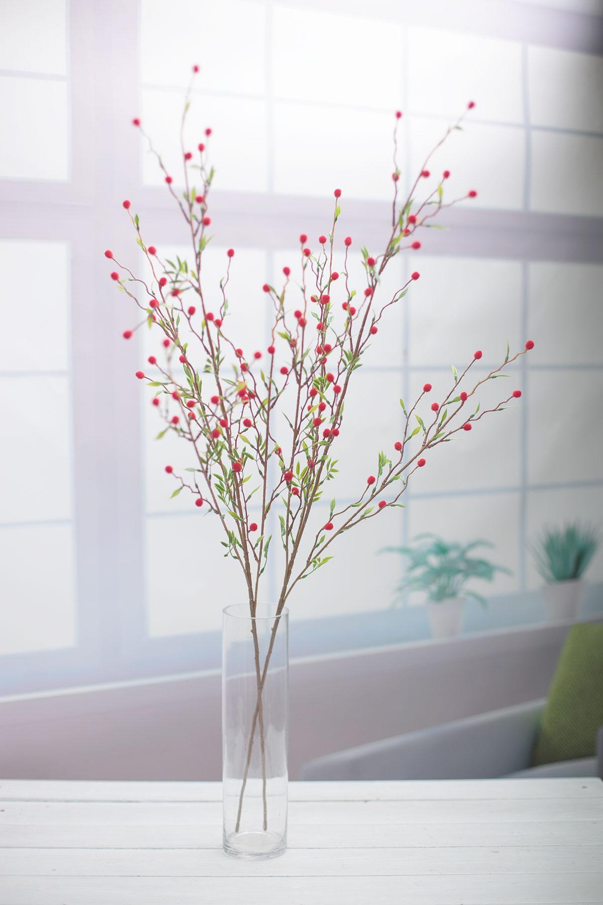 레드 미모사 꽃 가지 세로 큰 기본 이미지