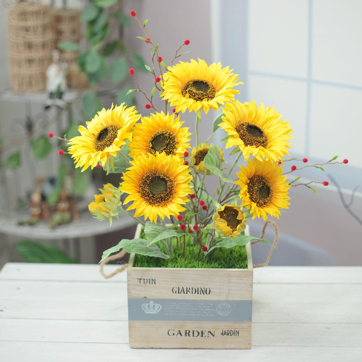 아홉송이 태양해바라기 꽃 가든 화분 기본 이미지