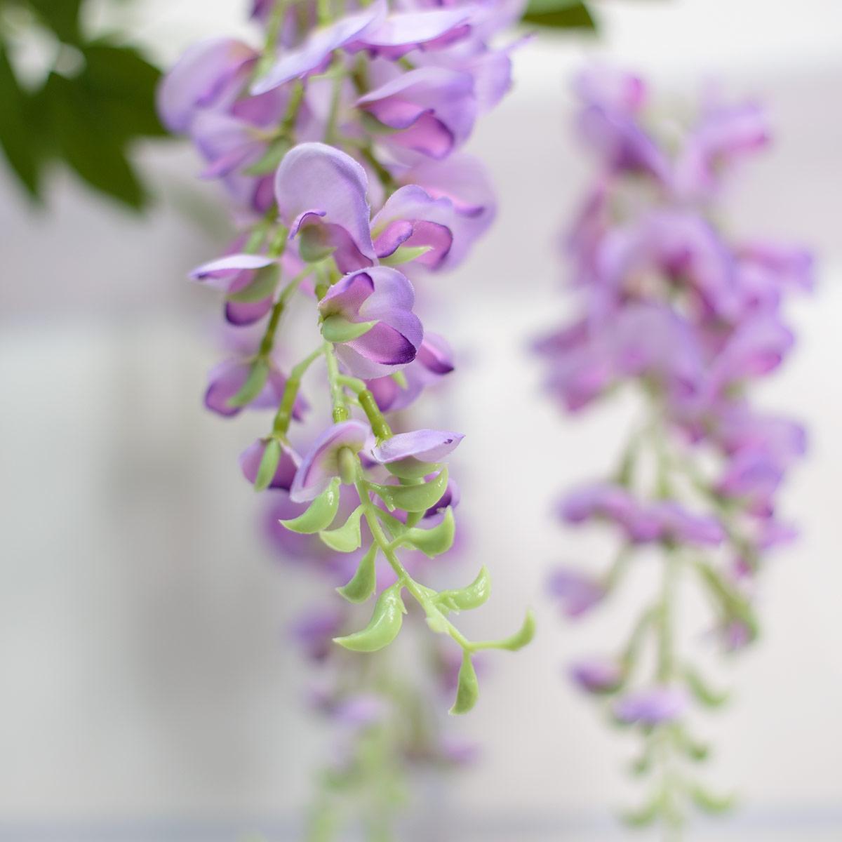 라일락 등꽃 디테일 사진2