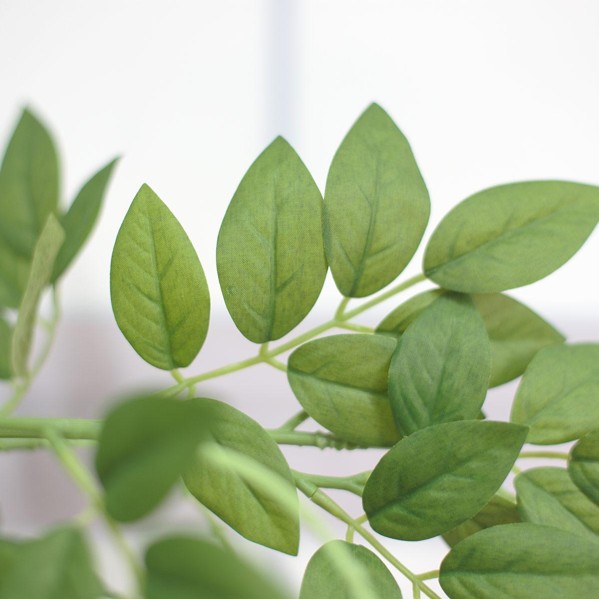 초록 잎사귀 디테일 사진