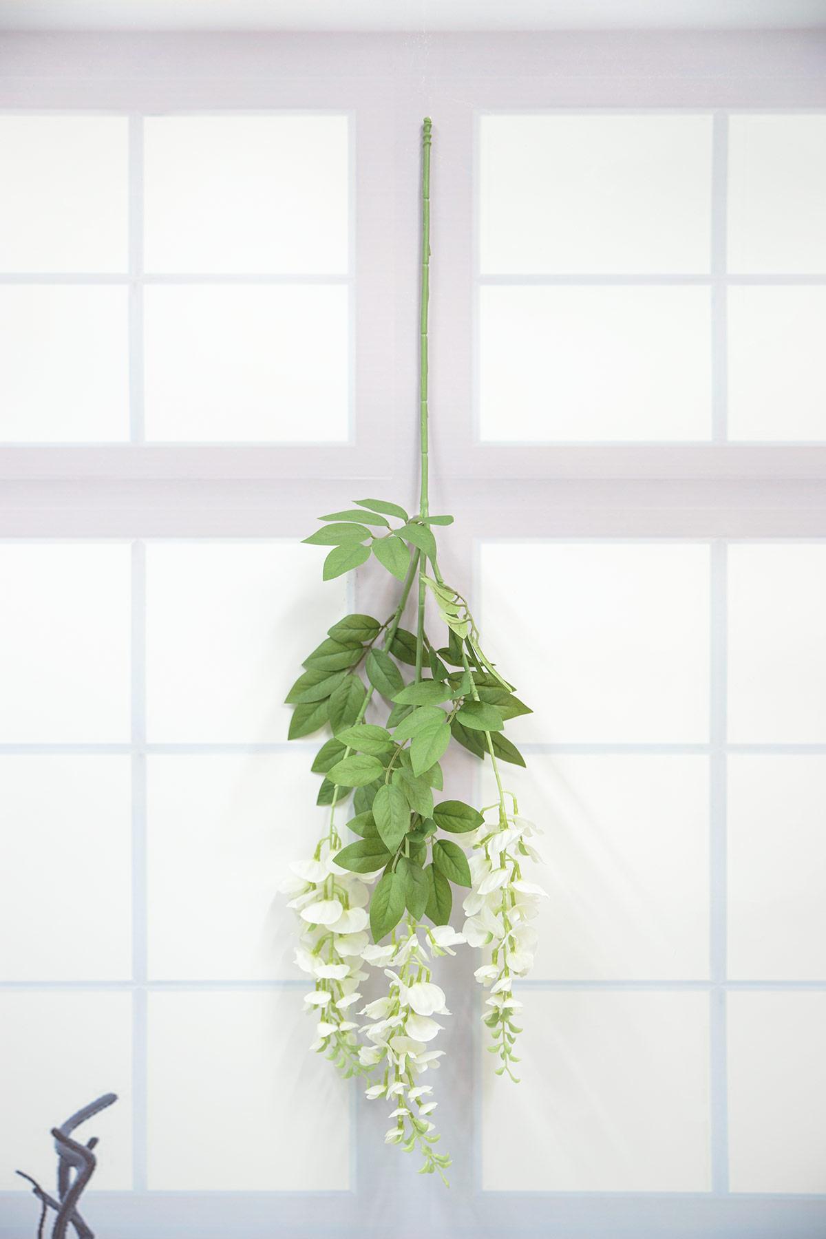 라일락 등꽃가지 거꾸로 벽에 걸어놓은 사진