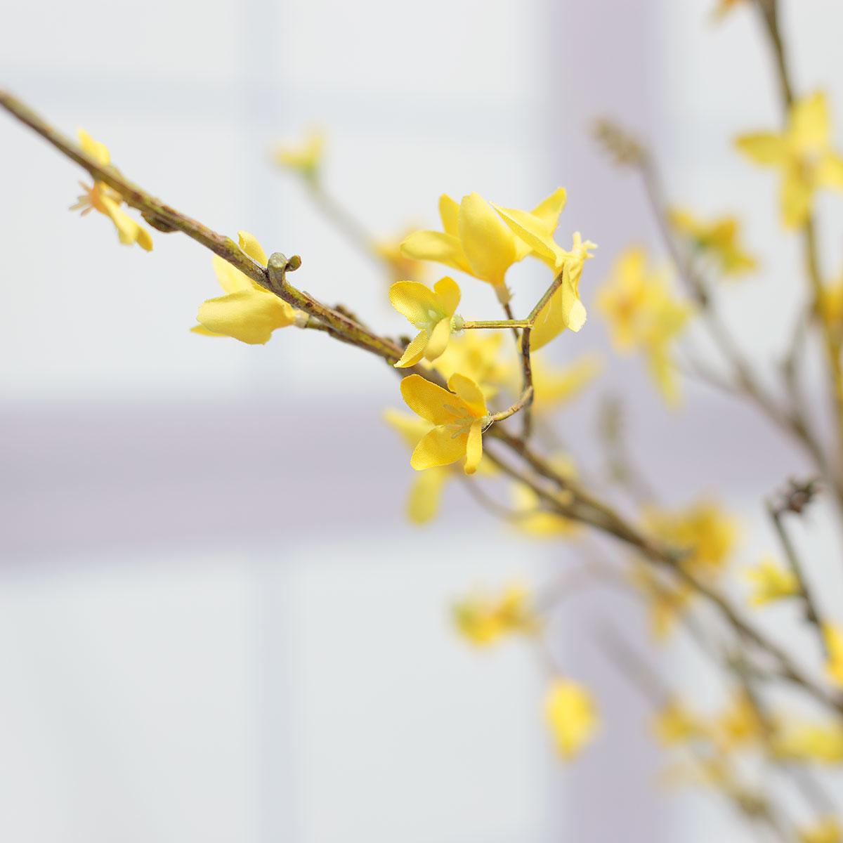 잔줄기와 개나리꽃 디테일사진