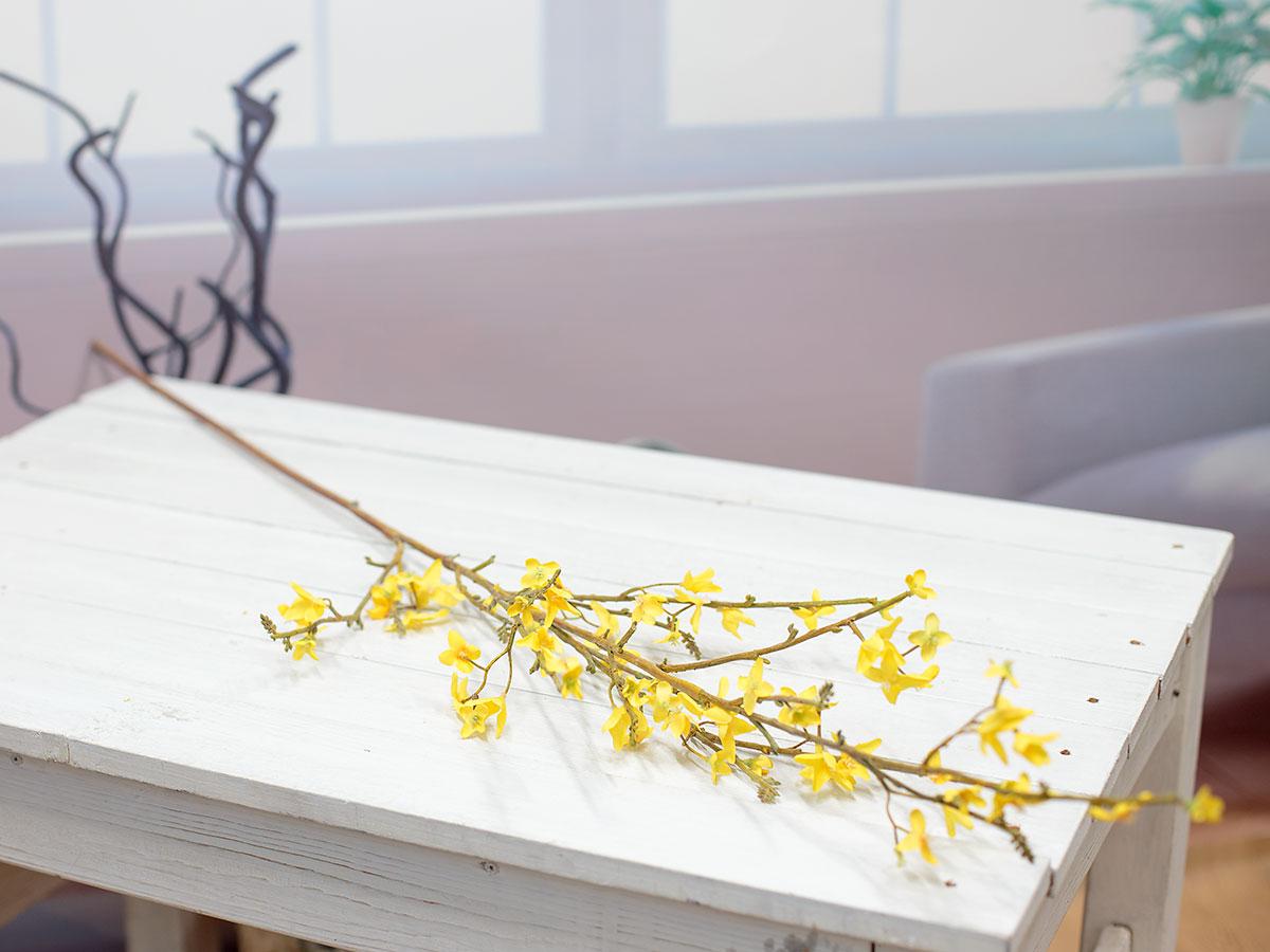 테이블 위에 한줄기