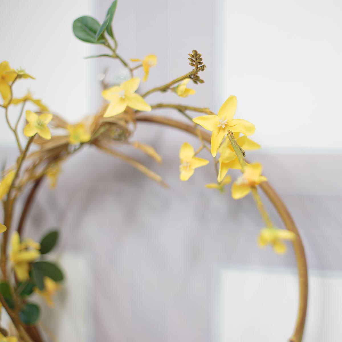 개나리 꽃 디테일 사진1