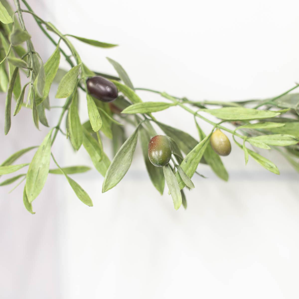 올리브 열매 디테일