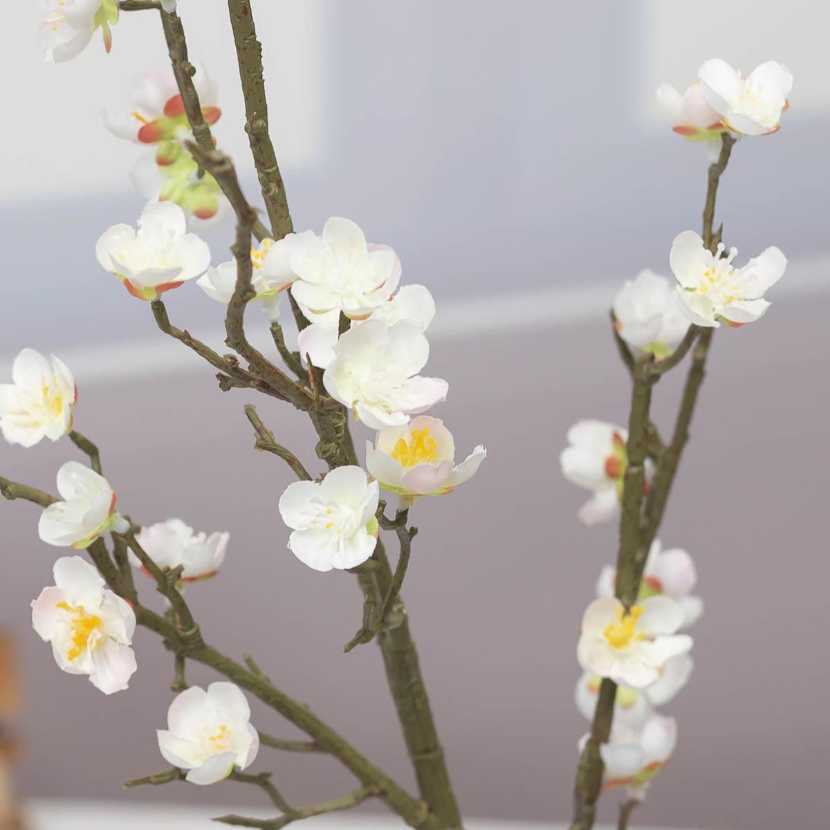 살구꽃 나무 가지 Cream(크림) 디테일