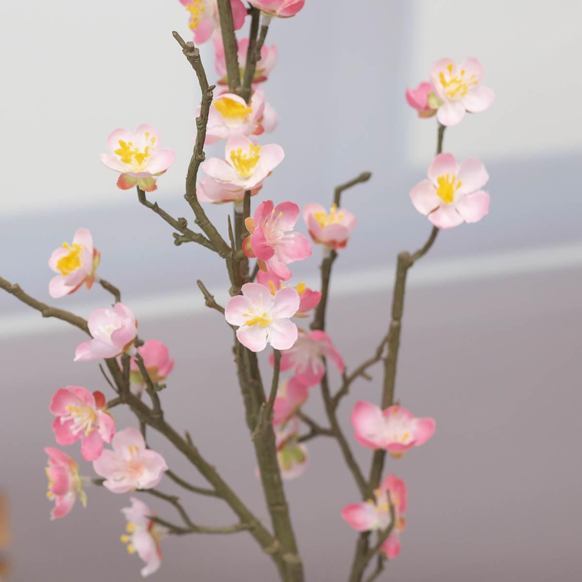 살구꽃 나무 가지 Pink(핑크) 디테일