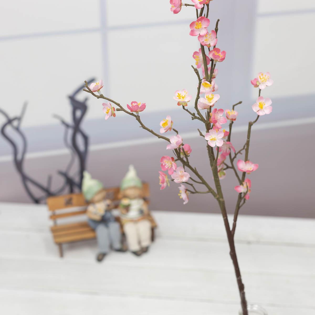 살구꽃 나무 가지 Pink(핑크) 기본이미지