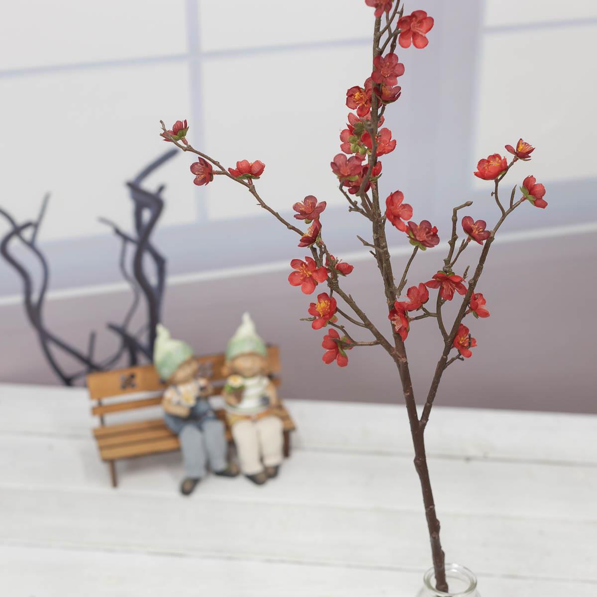 살구꽃 나무 가지 Red(레드) 기본이미지