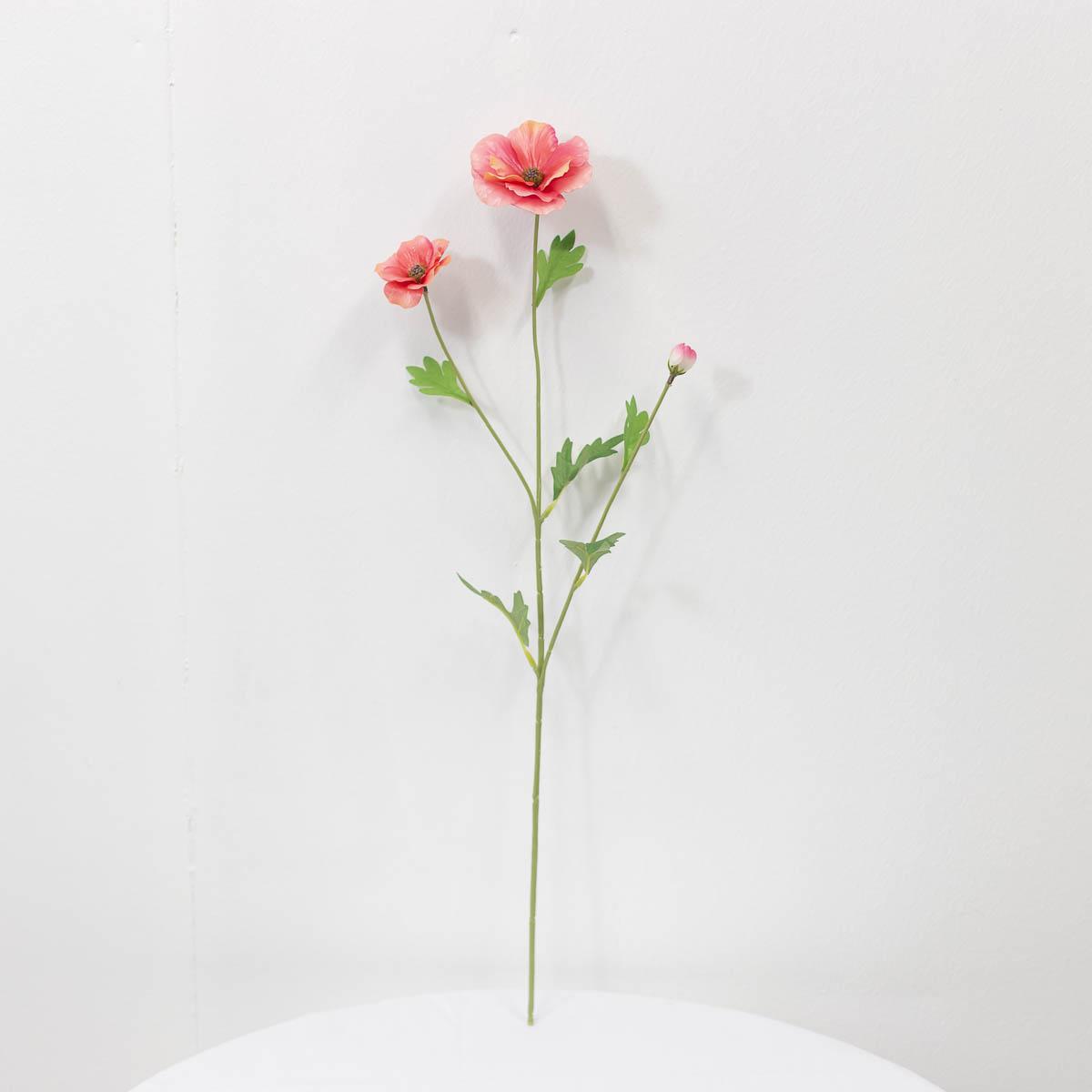 버터플라이 라넌큘러스 꽃 가지 60cm 퓨샤