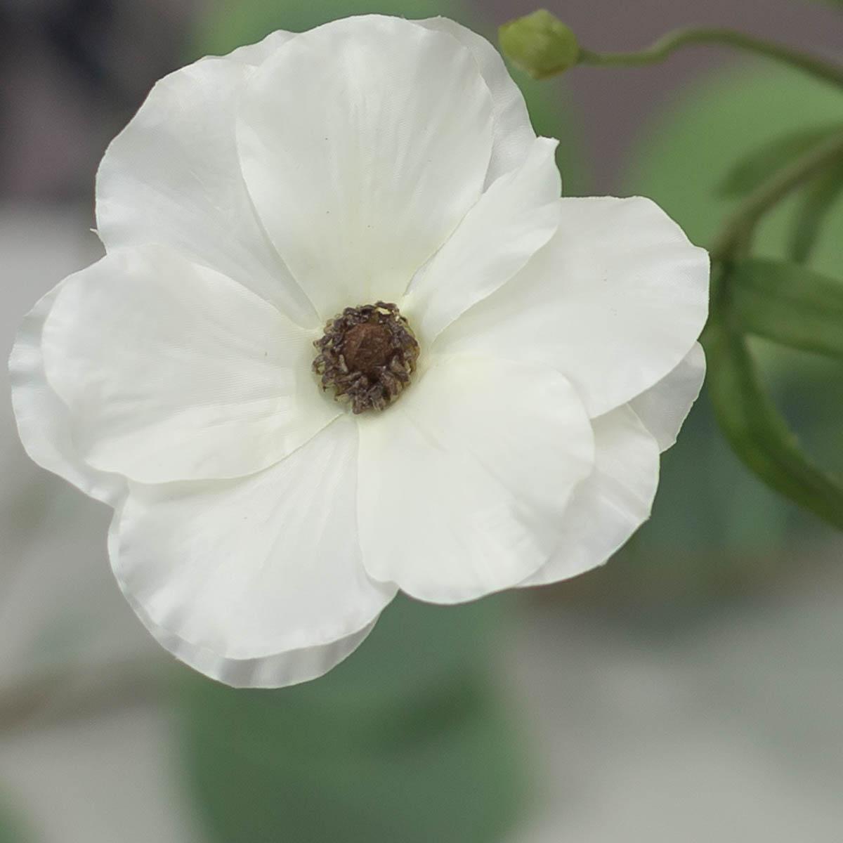 버터플라이 러넌큘러스 꽃 가지 56cm Cream(크림) 꽃송이 디테일