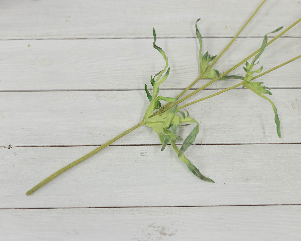 세송이 스카비오사 꽃 가지 62cm 줄기 디테일