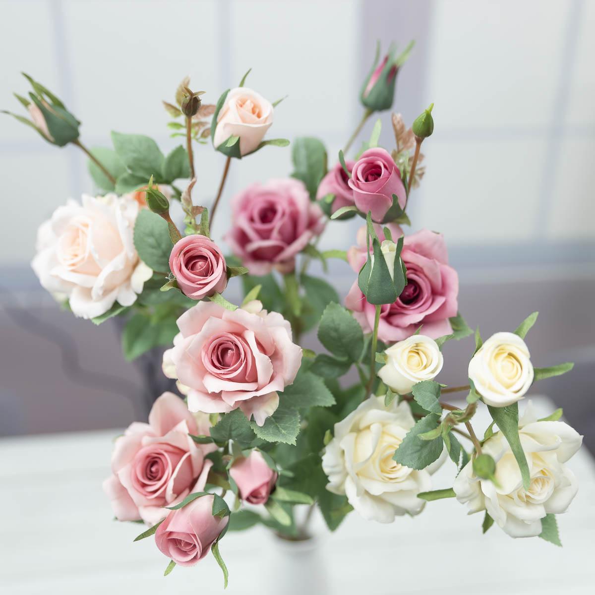 퀸 엘리자베스 장미 꽃 가지
