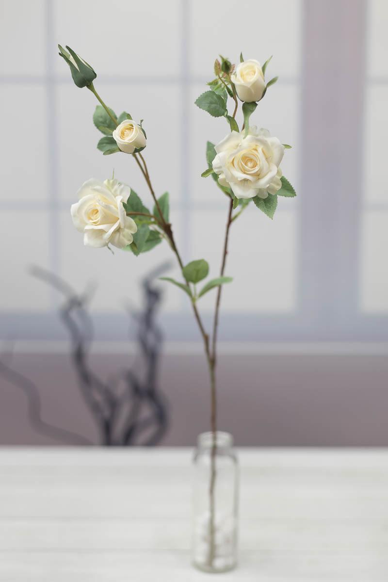 퀸 엘리자베스 장미 꽃 가지 Cream(크림)