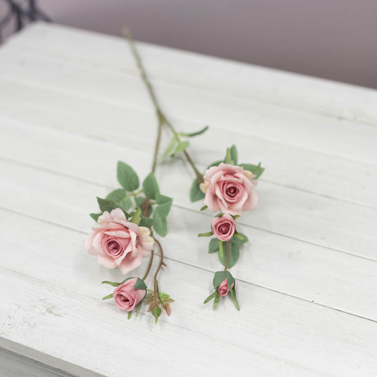 퀸 엘리자베스 장미 꽃 가지 Pink(핑크)