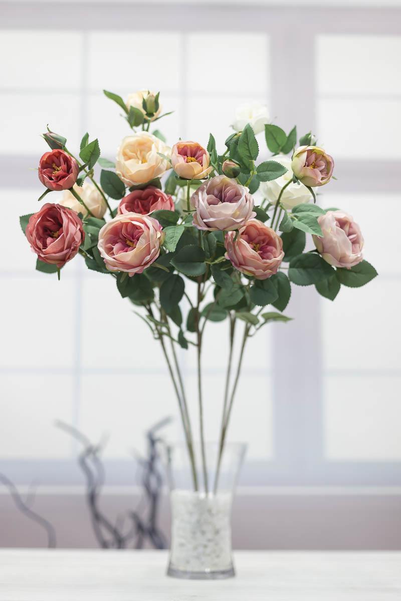 오스틴 줄리엣 장미 꽃 가지 67cm
