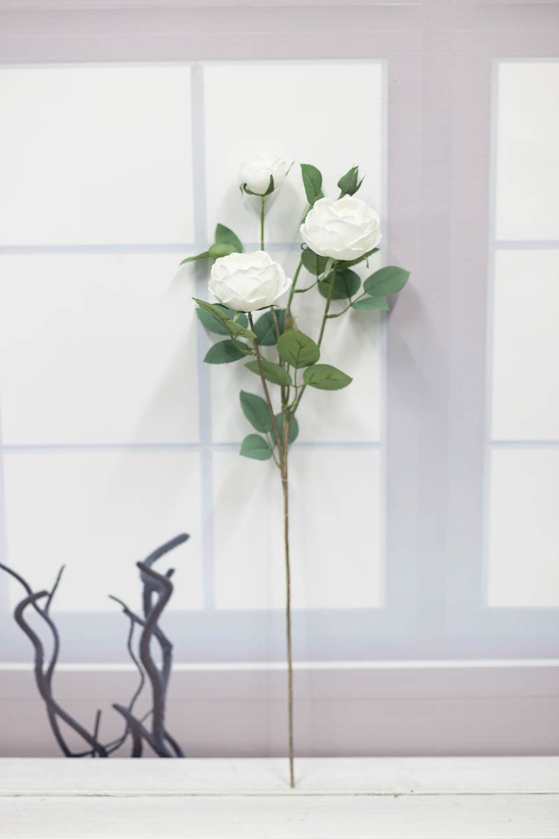 오스틴 줄리엣 장미 꽃 가지 Cream(크림)