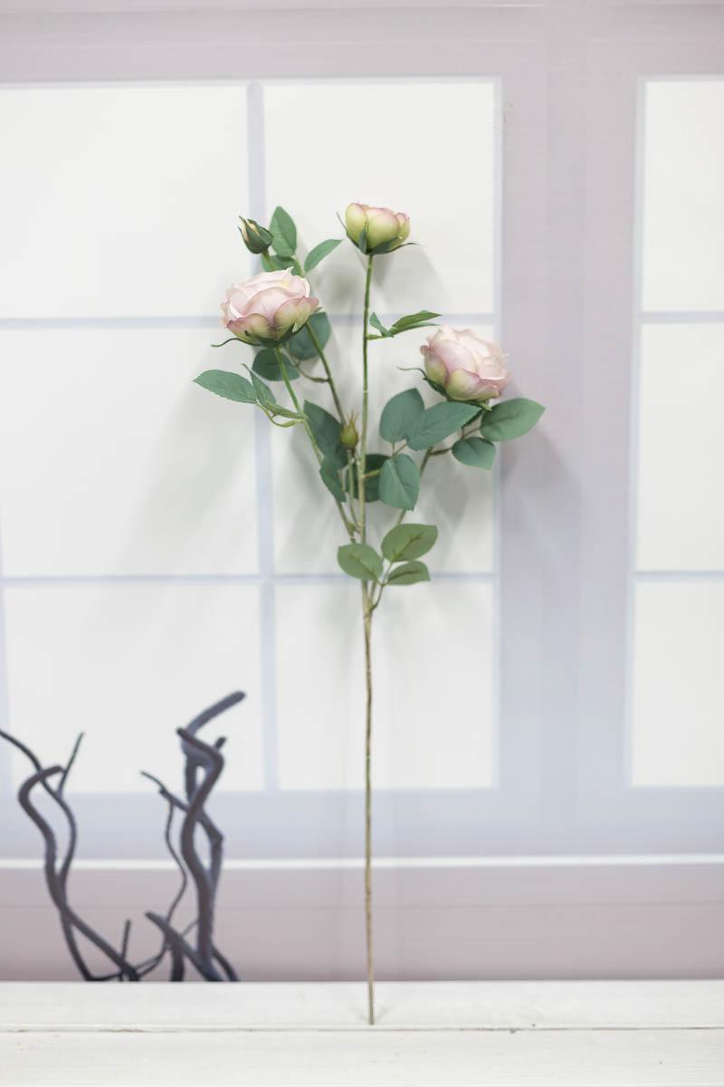 오스틴 줄리엣 장미 꽃 가지 Lavender(라벤다)