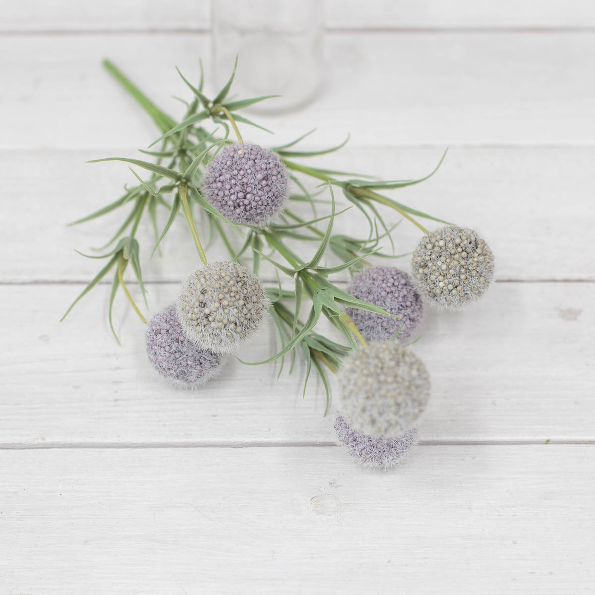소프트 팜팜 알륨 미니 꽃 부쉬 퍼플/그린