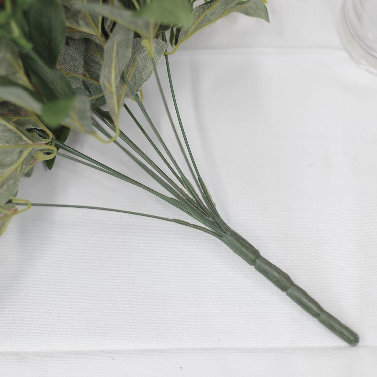 풍성한 작약 꽃 부쉬 줄기, 뿌리 디테일