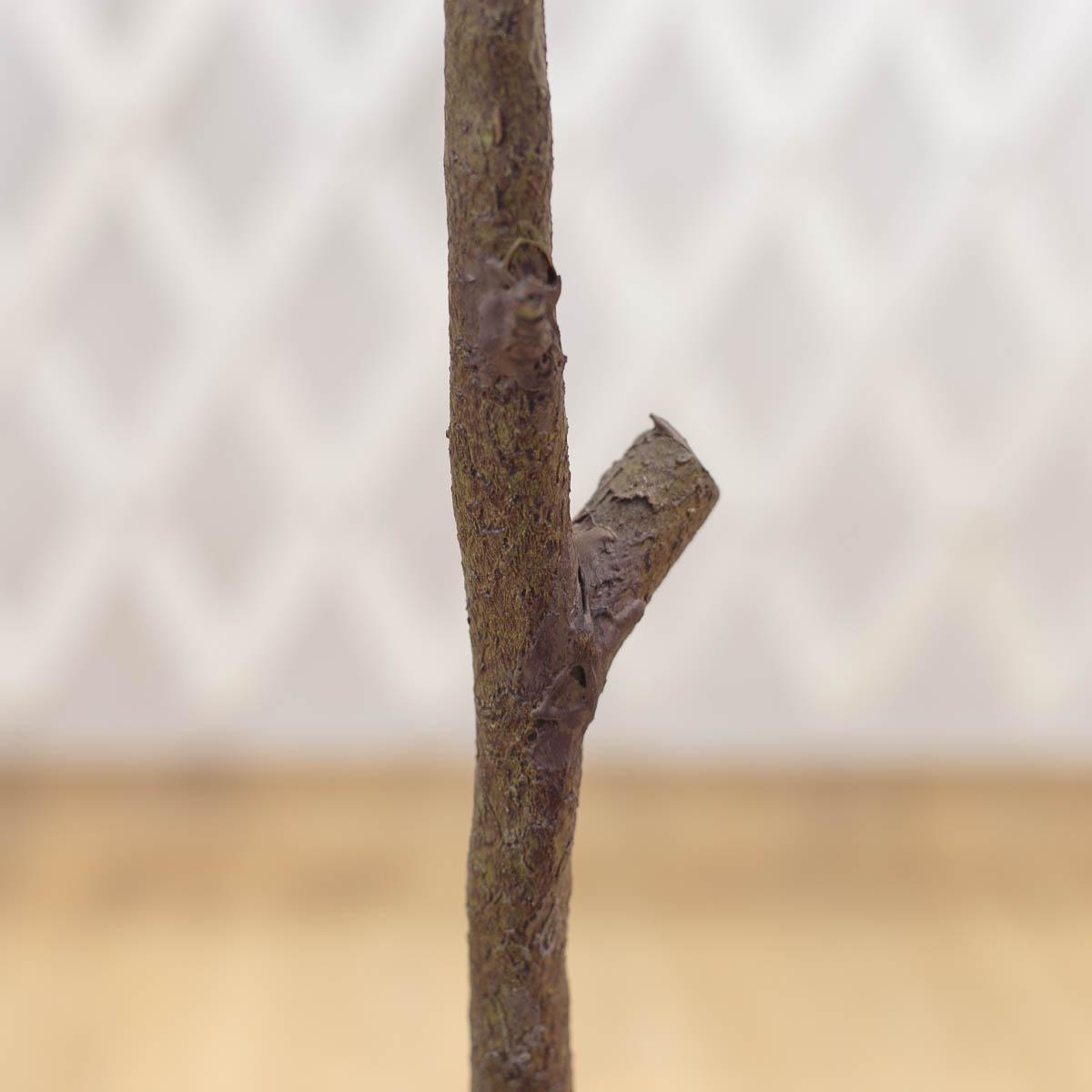 마르샤장미 조화나무 인조화분 레터링 원형 플라워포트 줄기 디테일