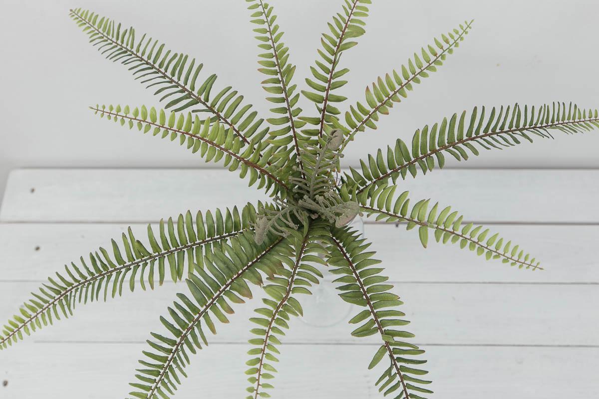 내추럴 보스톤고사리 조화잎 부쉬 조화식물