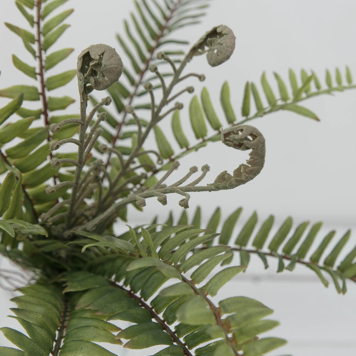 내추럴 보스톤고사리 조화잎 부쉬 조화식물 새순디테일