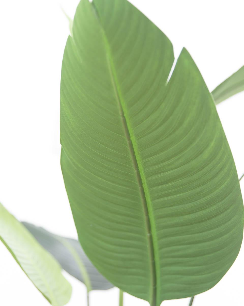 스텔리지아 극락조조화 인조나무 150cm Tuin사각화분 대 세트 잎사귀디테일 아래쪽