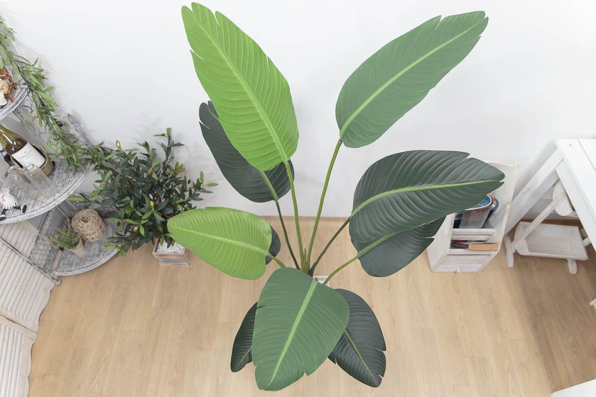 스텔리지아 극락조조화 인조나무 150cm Tuin사각화분 대 세트 위에서 본 모습