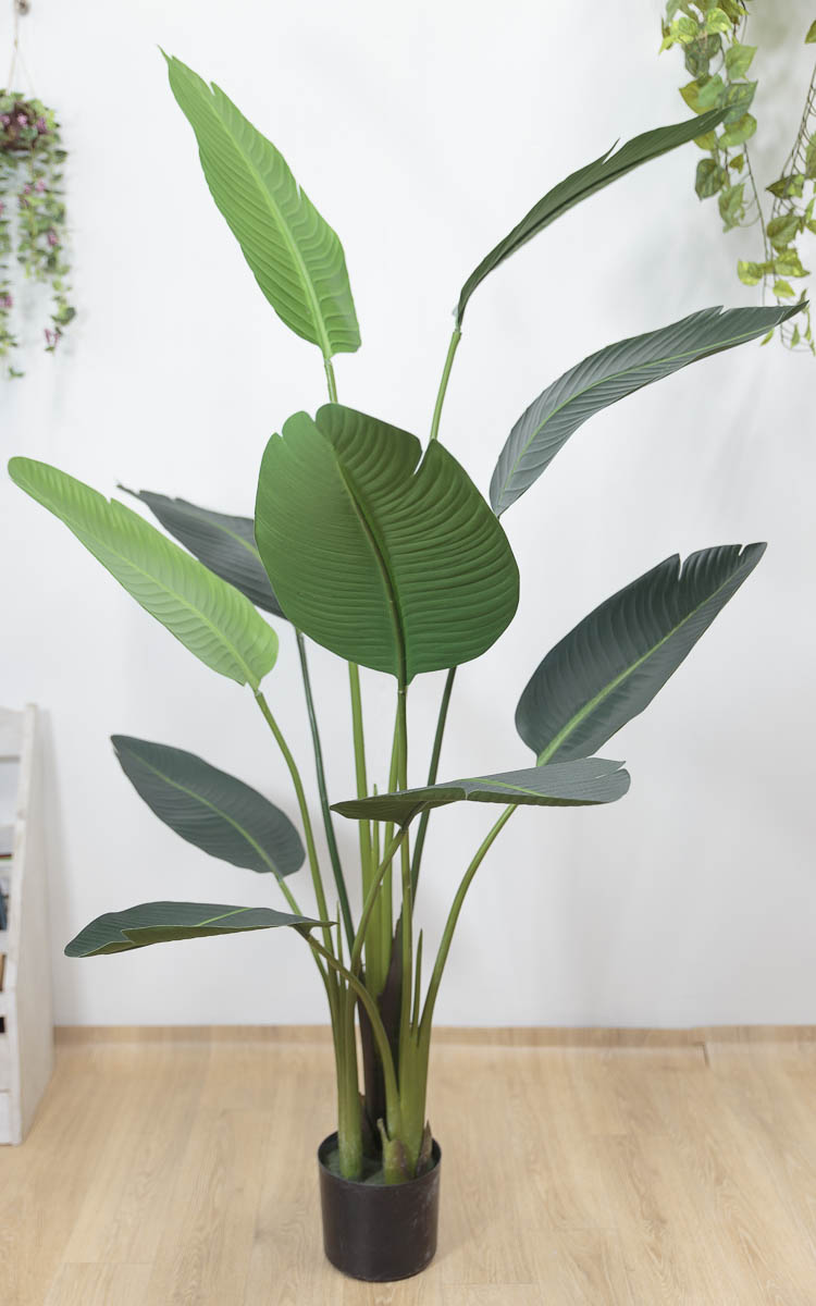 스텔리지아 극락조조화 인조나무 150cm Tuin사각화분 대 세트 펼친후의 모습