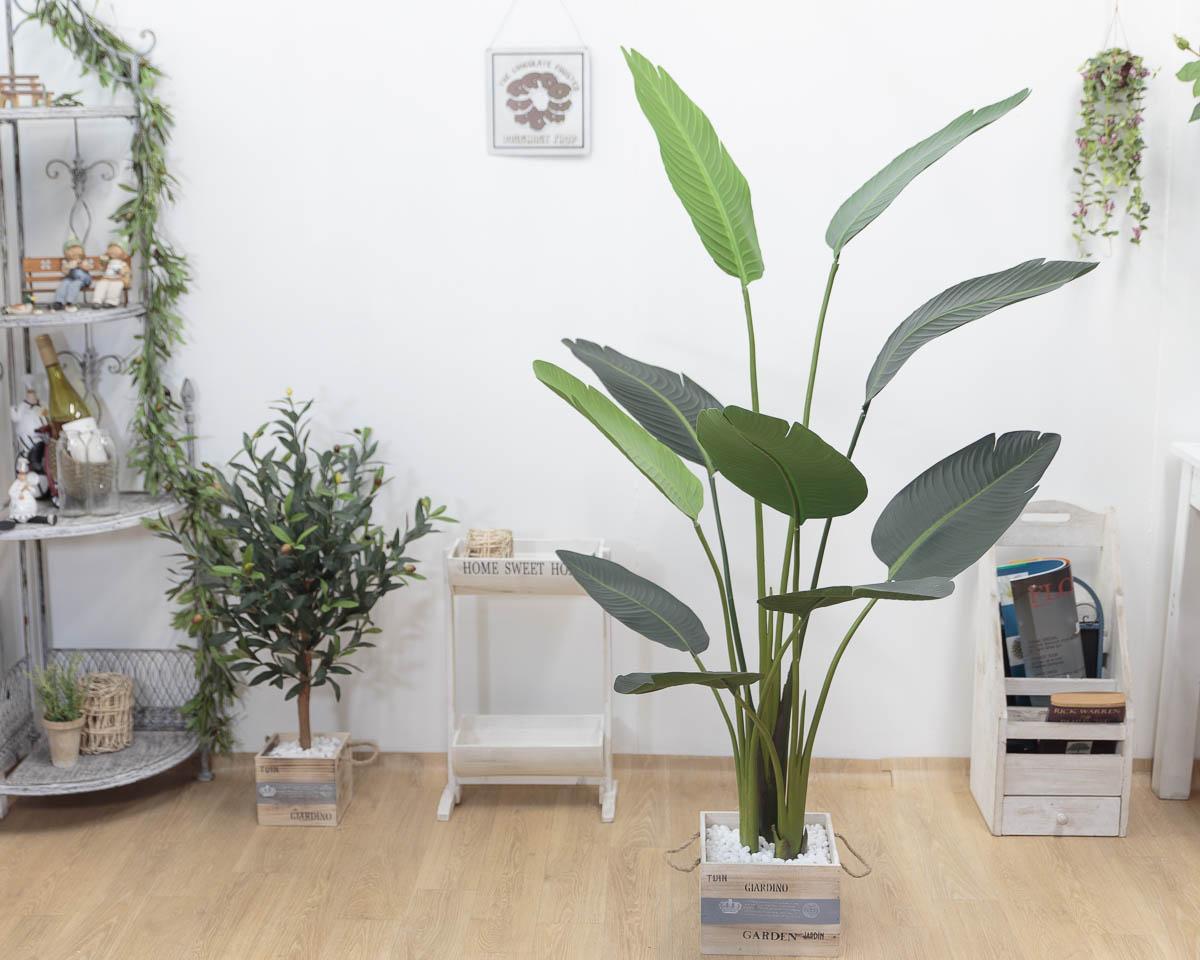 스텔리지아 극락조조화 인조나무 150cm Tuin사각화분 대 세트 장식샘플