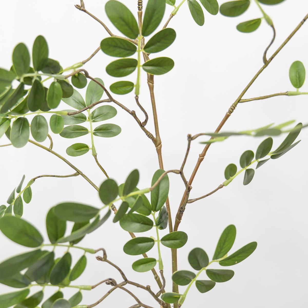 실크플라워 아카시아조화 잎사귀 나무가지 95cm 디테일