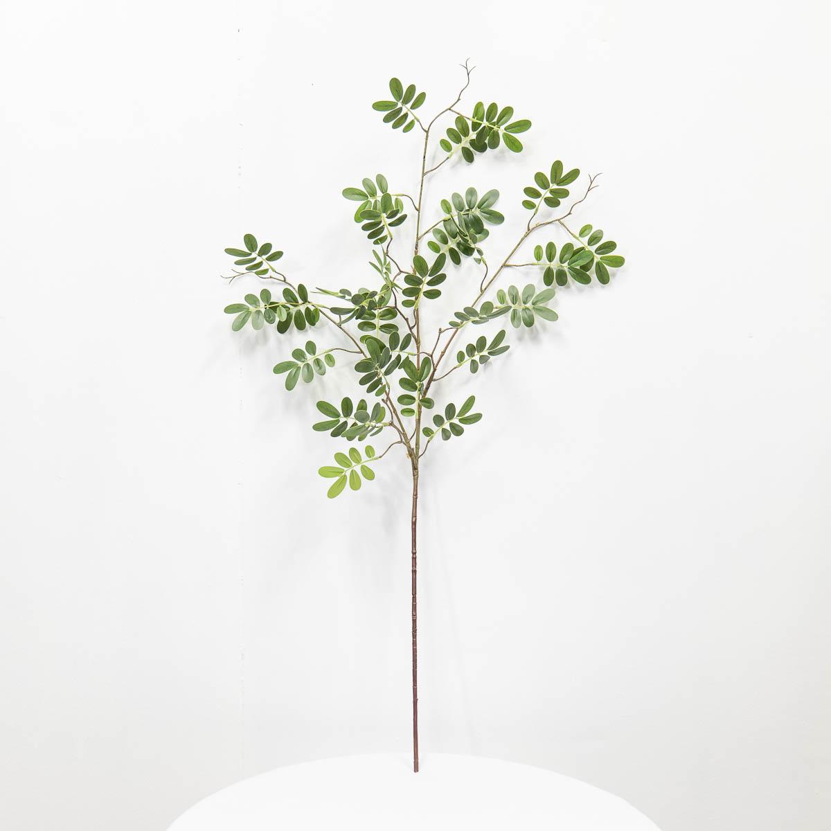 실크플라워 아카시아조화 잎사귀 나무가지 95cm 세워서 찍은사진