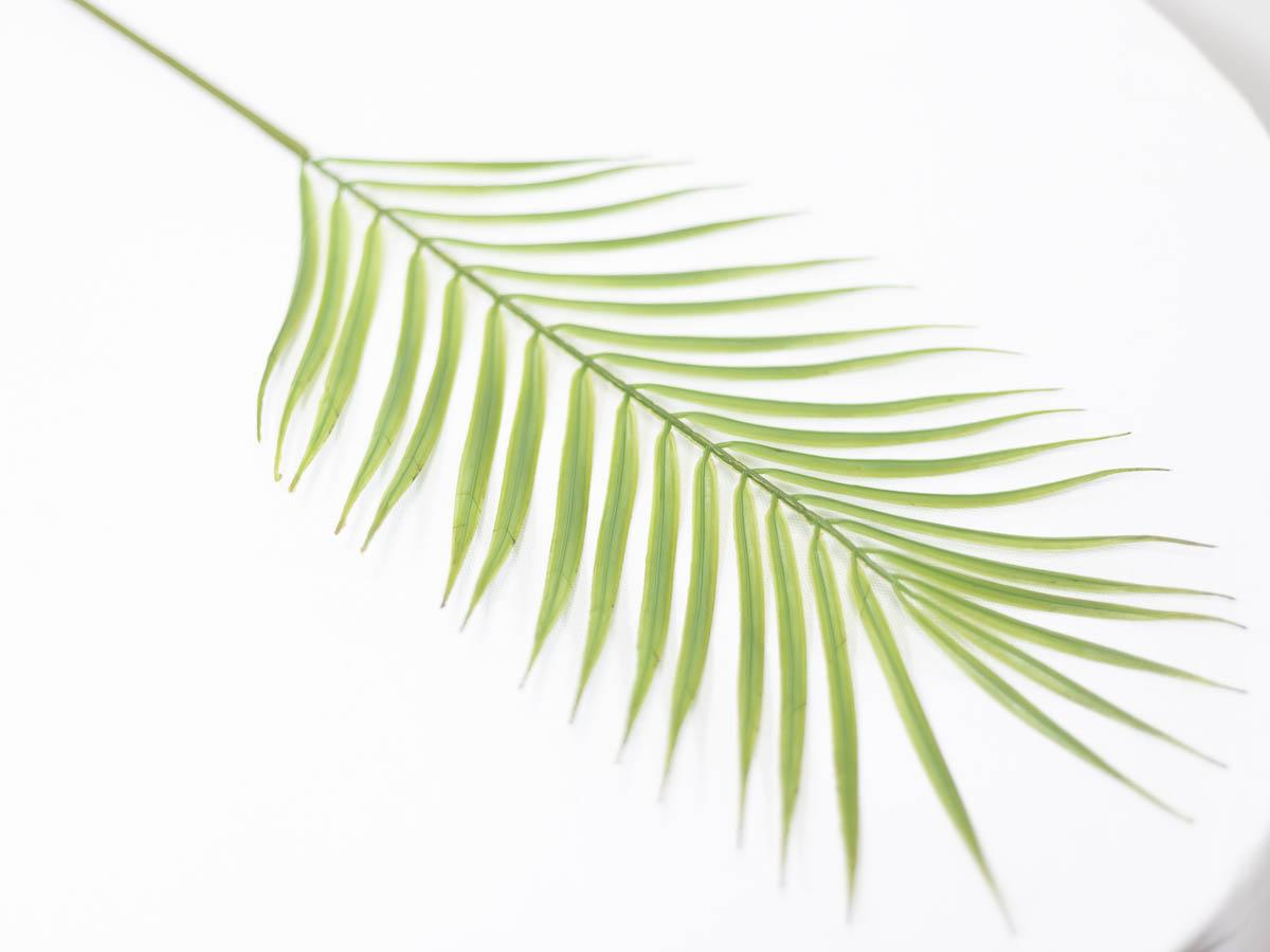 아레카야자조화 잎사귀 나무가지 79cm 잎사귀 아래쪽